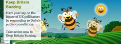 Keep Britain Buzzing - Have your say on the future of UK pollinators