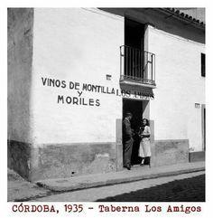 Córdoba 1935 taberna los amigos