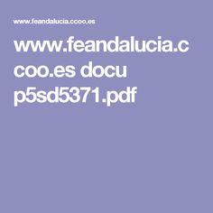 www.feandalucia.ccoo.es docu p5sd5371.pdf
