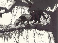 Black panther at night