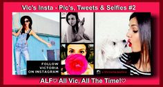 ALF♡ All Vic, All The Time!♡ Vic's Insta - Pic's, Tweets & Selfies - Board #2 - Pinterest Board Cover - ALF♡ All Vic, All The Time!♡ // +++ ALF +++