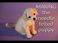 The Making of the Needle Felted Retriever Puppy - Cute Puppies Videos Needle Felted Cat, Needle Felting Kits, Needle Felting Tutorials, Needle Felted Animals, Wet Felting, Felt Animals, Beginner Felting, Felt Dogs, Felt Cat