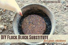 DIY Flock Block Substitute   The Prairie Homestead