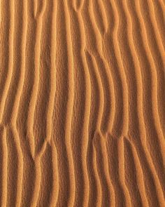 "JULIA ANGELINA (@juliaangelina_) posted on Instagram: ""Colors of the wind 🌬 #desertsand . . . #desert #sahara #dubaidesert #wüstensand #nofilter #mood #aesthetic #myaesthetic #nofilterneeded…"" • Mar 13, 2021 at 7:24am UTC Dubai Desert, Animal Print Rug, Deserts, Mood, Colors, Instagram, Postres, Colour, Dessert"