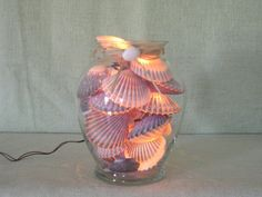 NANTUCKET SCALLOP SHELL Night Light  F by MaidenNantucket on Etsy, $85.00
