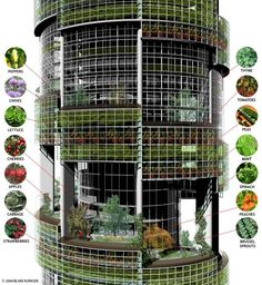Vertical farms could bring agriculture to dense urban areas