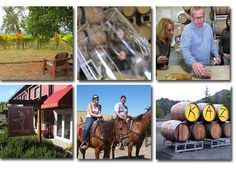 Get back to basics and experience Sonoma the way it used to be, before giant corporations took over and tasting rooms became retail stores. Learn about the wine from the winemaker, taste from barrels, even ride a horse though a vineyard. Visiting the small Sonoma wineries is a rewarding experience, giving you a glimpse into the heart and soul of the people who made the wine. Even better, many have cheap or evenfreetastings! Size does matter, and small is good in Sonoma.