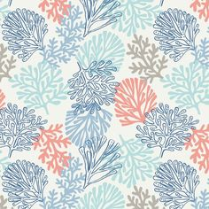 Lewis and Irene - Sea plants on white