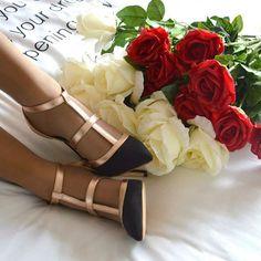 Elenoire stands for Elegance  Sc Spring Collection 17