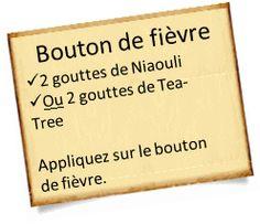 soigner un bouton de fievre 2 Soigner un bouton de fièvre avec les huiles essentielles.