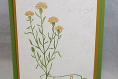Stamp on the Go with Wild About Flowers