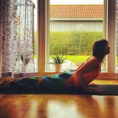 Day 1 of Yoga challenge #yoga4growth  Today's pose is Cobra Pose  Hosts : @koyawebb @ladydork Sponsors : @aloyoga @toesox @sunwarriortribe @liforme  #yoga #morningyoga #yogaeveryday #yogachallenge #instayoga #inspiration #progress #learn #practice #havefun #hälsa #välmående by jen_jen74