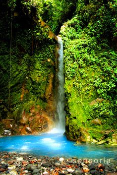 Sensoria Land of Senses - Guanacaste Tours- Costa Rica Travel