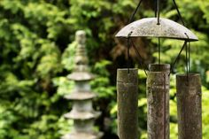 Some say Feng Shui products work, and some say don't. What is going on and why do Feng Shui experts still recommend them? Feng Shui Your Garden, How To Feng Shui Your Home, Dry Plants, Fake Plants, Plantes Feng Shui, Jardin Feng Shui, Feng Shui Stones, Calma Interior, Feng Shui Items