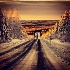 Winter road. #norrland #Arvidsjaur #winter <3 the MOST beautiful place I have been<3
