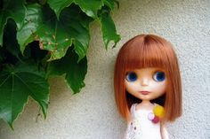 Blythe Doll with great hair