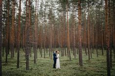 Forest fairytale vibes   Image by  Jaakko Sorvisto Photography