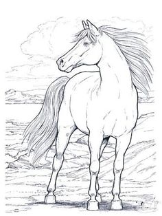 Top 48 Free Printable Horse Coloring Pages Online | Horse, Craft ...