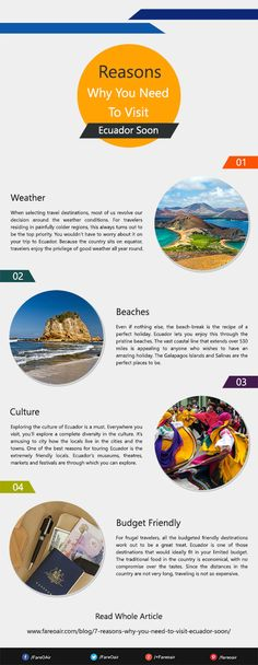 Perfect holiday, nature and so many other things which encourage you to chose Ecuador for your next travel destination.  #travel #Ecuador #infographic