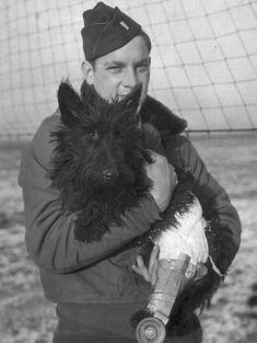 Follow up to Scottie Hero...Lassie II