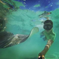 Try this experience to swim with the stingrays in Moorea ! You won't regret it ;)