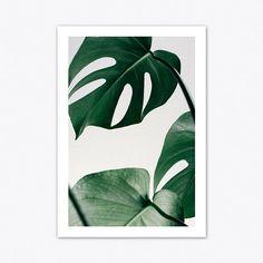 Monstera Print Leaf Print Tropical Wall Art Beach Decor