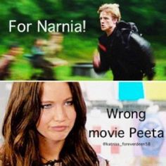 "I don't normally pin things that ""mock"" Peeta or the hunger ganess. but this is funny< ""Hunger ganess"" I'm laughing so hard I'm so sorry XD<<<right tho! The only thing I can think is ""fake fan"" like really? Hunger Games Memes, Hunger Games Fandom, The Hunger Games, Hunger Games Catching Fire, Hunger Games Trilogy, Funny Quotes, Funny Memes, Jokes, Hilarious"