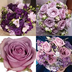 Light-Purple-Flowers