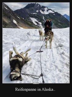 Reifenpanne in Alaska..