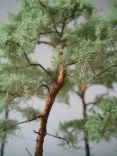 Miniature Trees, Planer, Diy And Crafts, Scenery, Miniatures, Train, Flowers, Photos, Other