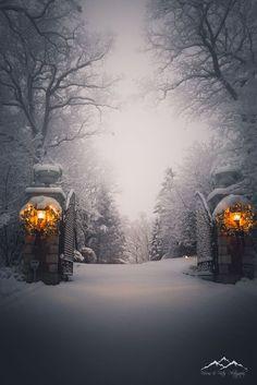 "Visions & Vistas Photography - visionsandvistas: ""& the Season"" - Winter Forest, Winter Szenen, I Love Winter, Winter Magic, Winter Christmas, Winter Photography, Nature Photography, Snowy Day, Snow Scenes"