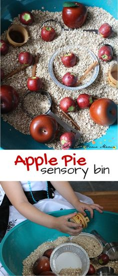 Apple Pie Sensory Bin - a cinnamon-scented, textured sensory bin full of math and language opportunities. An easy fall learning activity for kids! September Activities, Apple Activities Kindergarten, Fall Activities For Kids, Preschool Apples, September Themes, September Crafts, Fall Activities For Toddlers, Preschool Apple Theme, September Preschool