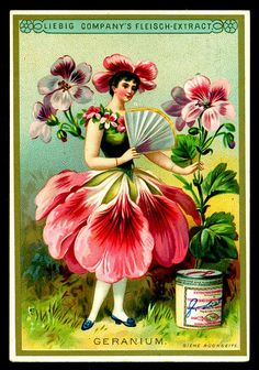 Geranium Flower Girl trading card issued by Liebig Extract of Beef Company. Vintage Labels, Vintage Ephemera, Vintage Cards, Vintage Postcards, Vintage Images, Vintage Retro, Decoupage Vintage, Vintage Fairies, Vintage Flowers