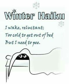 I wake, reluctant; Too cold to get out of bed; but I need to pee. Winter Haiku