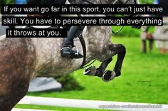 That's pretty much true of all the advanced disciplines - dressage, reining, eventing etc. It takes a special person. It takes an incredible person to also be a great horseman. That's why Dujardin, Stepphan Peter's and so on. Equestrian Quotes, Equestrian Problems, Equine Quotes, Jump Quotes, Inspirational Horse Quotes, Riding Quotes, Funny Horses, Horse World, Horse Pictures