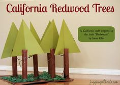 Learn about California with Redwood Trees project #homeschool #geography #usa