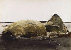 Andrew Wyeth - Sea Snails, 1953, watercolor.  Farnsworth Art Museum