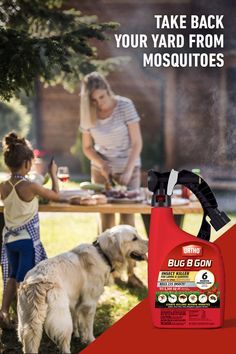 Kick back & relax knowing invading summer insects won't be bugging you this summer. Tree Saw, Mosquitos, Lawn And Landscape, Home Vegetable Garden, Backyard For Kids, Fruit Trees, Bugs, Relax, Lucas Terrier