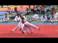 The Best Taekwondo Demonstration Ever Low
