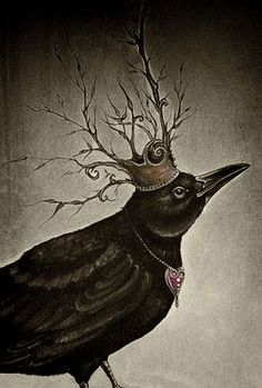 Wonderful crow with crown~