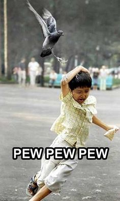 Birds Are Bullies - Ewww Meme - Bird poop bombing! I seriously died My intake assimilation and elimination are in perfect order. I am at peace with life. The post Birds Are Bullies appeared first on Gag Dad. Funny Kids, The Funny, Perfectly Timed Photos, Picture Fails, Poor Children, Laugh Out Loud, Youtubers, Funny Animals, Funniest Animals