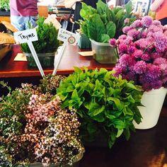 Healthy summer foods- grab them while theyre in season! http://goo.gl/E8E4JC  #SummerLovin #FreshProduce