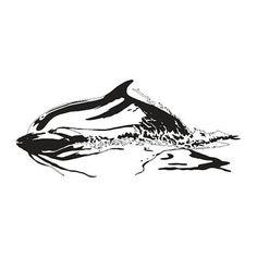 Distant Dolphin. #dolphin #art #artstagram #sealife #marinelife #newart #nature #natureart #wildlife #wildlifeart #sammyjackles