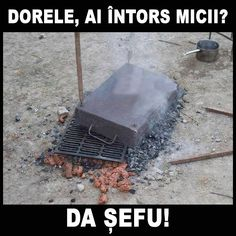 balbeck: D`ale lui Dorel Crazy Funny Memes, Wtf Funny, Funny Texts, Funny Quotes, Very Funny, Really Funny, Mom Humor, Best Funny Pictures, Romania