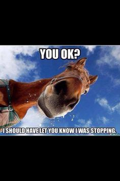 One reason to not go horse back riding!!