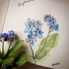 Love these little forget-me-not flowers. 4/100 #the100dayproject #sketchaday… More