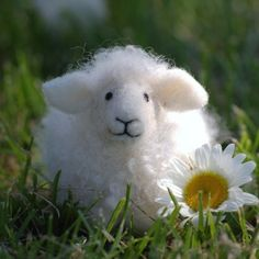 For those of you interested in learning how to needle felt: Needle Felting kit, Sheep by BearCreekDesign
