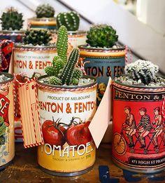 rótulos, latas e flores - fenton and fenton