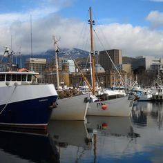 Hobart, Tasmania Beautiful Homes, Beautiful Places, Amazing Places, Port Arthur, Melbourne, Southport, Tasmania, Continents, East Coast