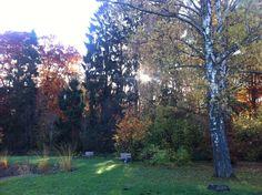 Herbstliche Sonnenmomente im Waldhotel Stuttgart.